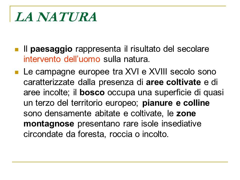 LA NATURA Il paesaggio rappresenta il risultato del secolare intervento dell'uomo sulla natura.