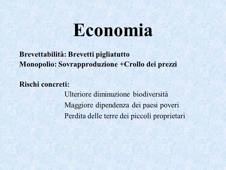 Economia Brevettabilità: Brevetti pigliatutto