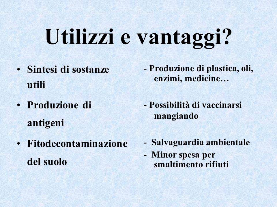 Utilizzi e vantaggi Sintesi di sostanze utili Produzione di antigeni