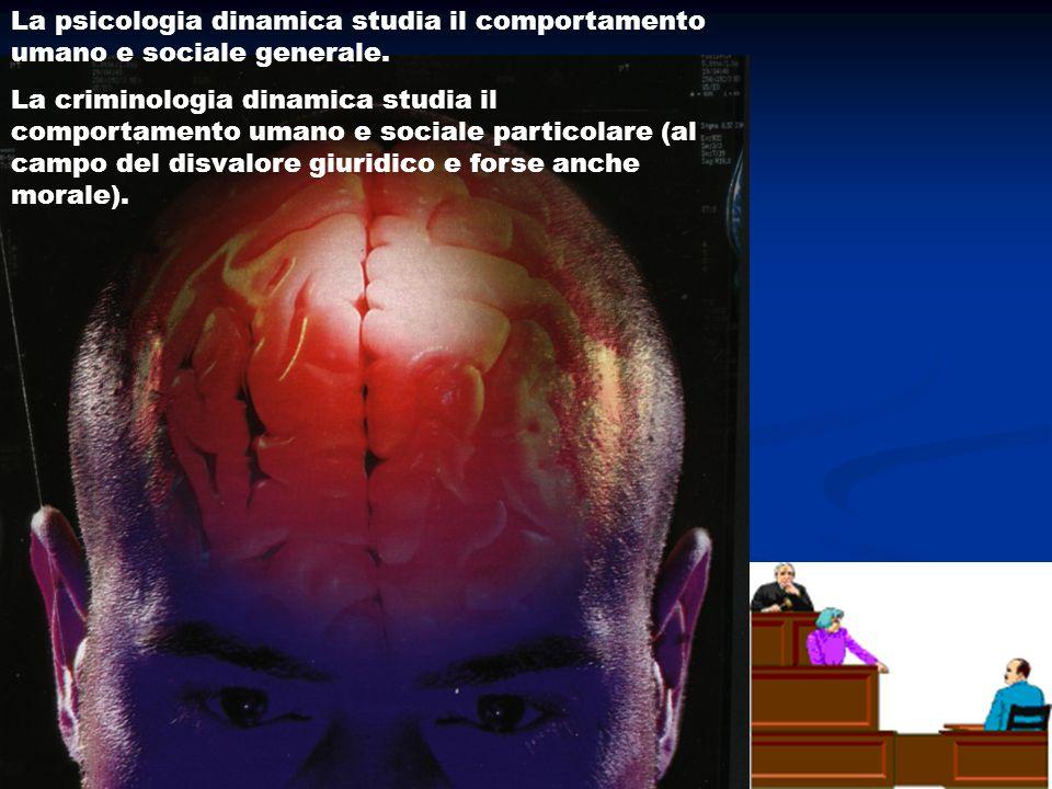 La psicologia dinamica studia il comportamento umano e sociale generale.