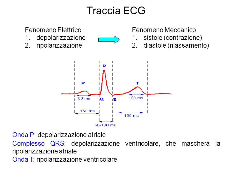 Traccia ECG Fenomeno Elettrico depolarizzazione ripolarizzazione