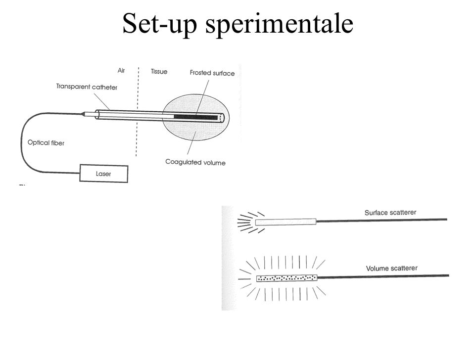 Set-up sperimentale