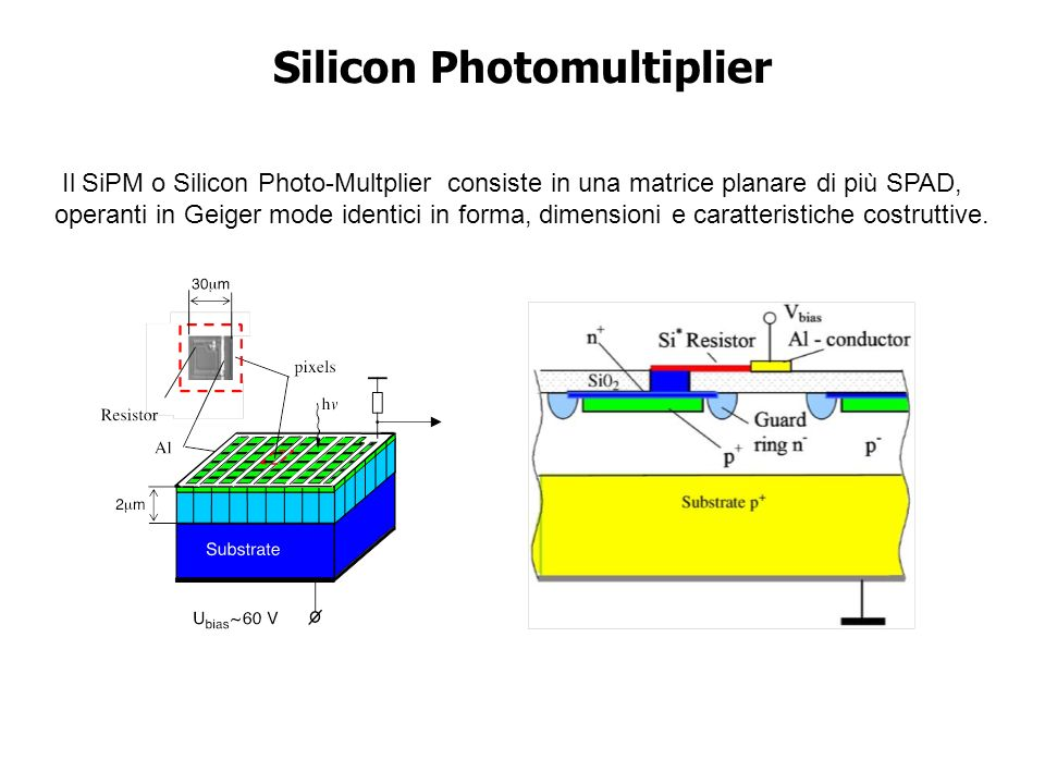 Silicon Photomultiplier