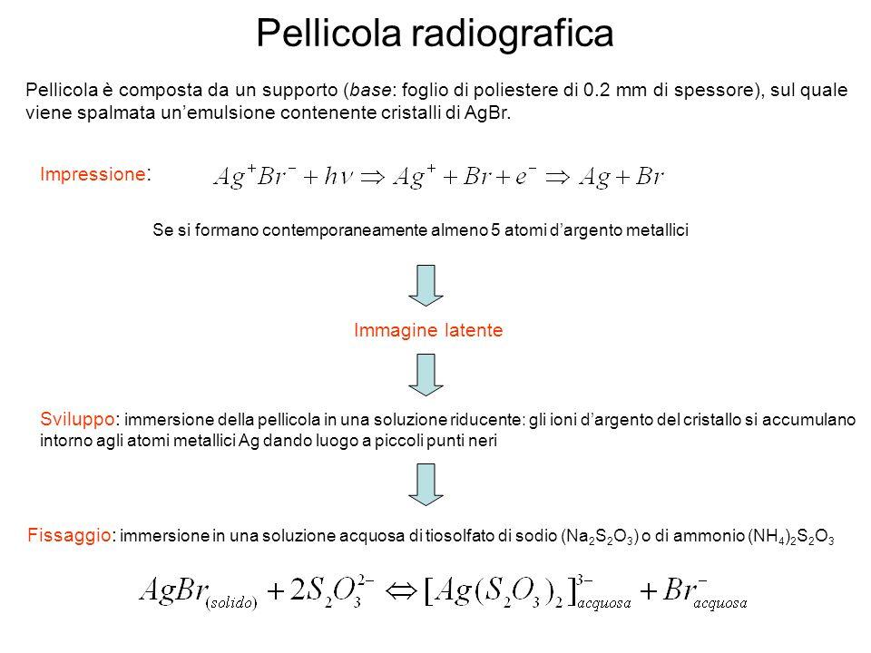 Pellicola radiografica