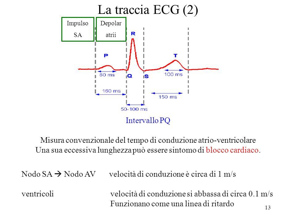 La traccia ECG (2) Intervallo PQ
