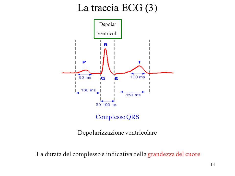 La traccia ECG (3) Complesso QRS Depolarizzazione ventricolare