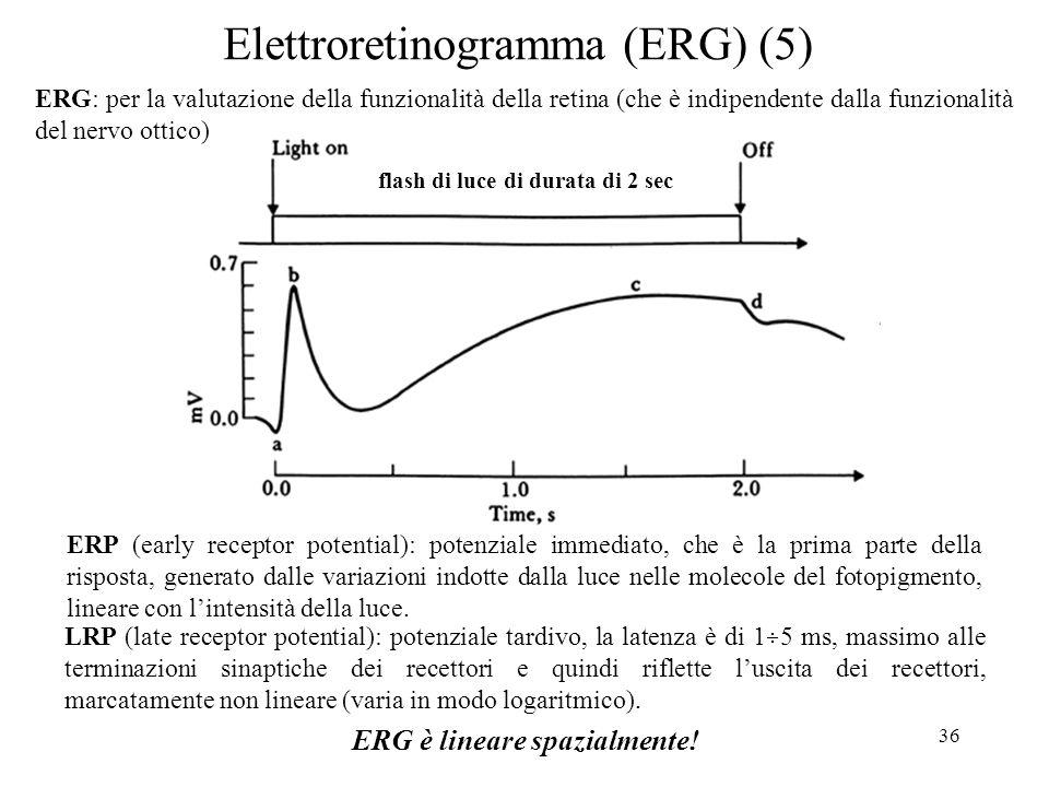 Elettroretinogramma (ERG) (5)