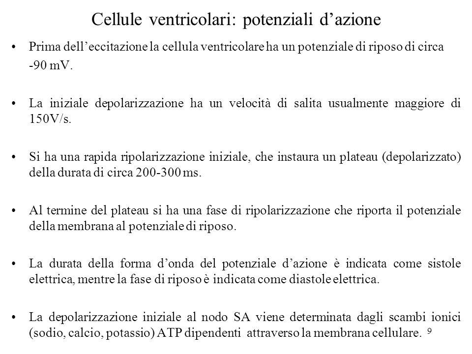 Cellule ventricolari: potenziali d'azione