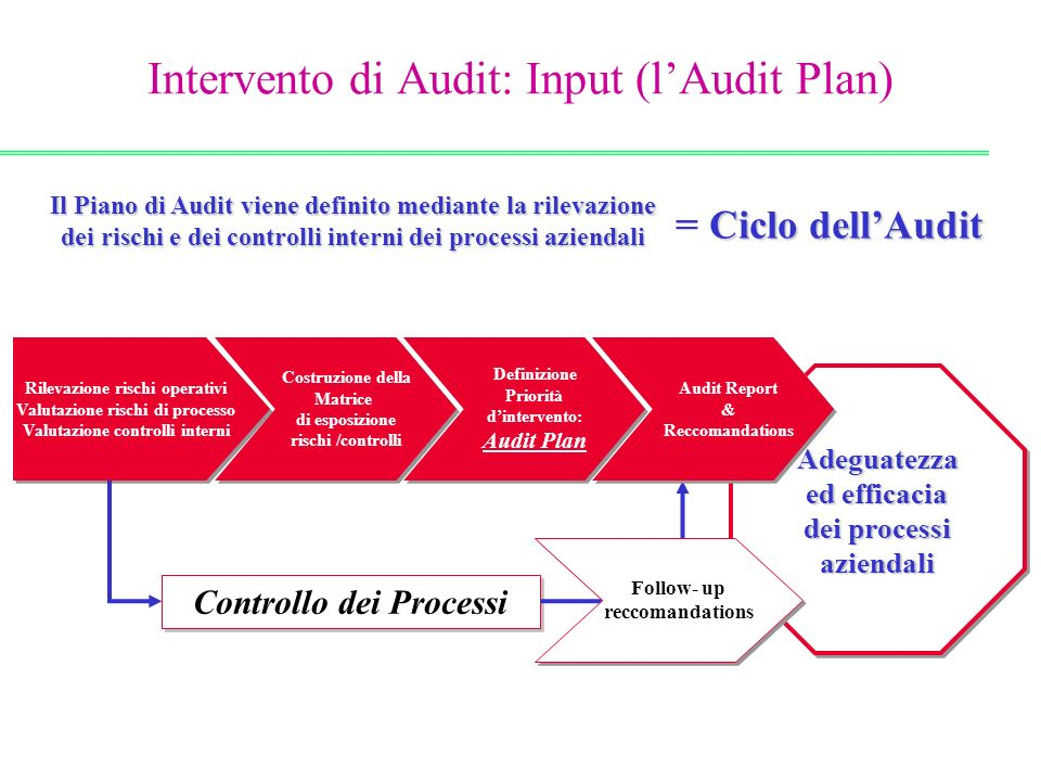 Intervento di Audit: Input (l'Audit Plan)