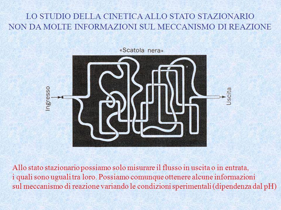 LO STUDIO DELLA CINETICA ALLO STATO STAZIONARIO