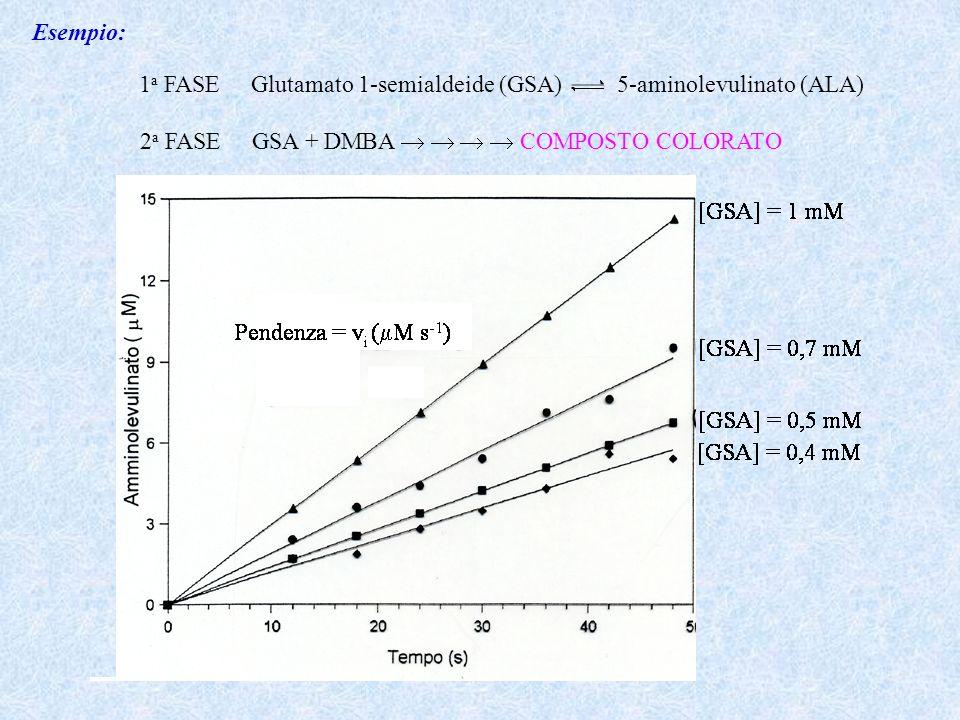 Esempio: 1a FASE Glutamato 1-semialdeide (GSA) 5-aminolevulinato (ALA) 2a FASE GSA + DMBA     COMPOSTO COLORATO.