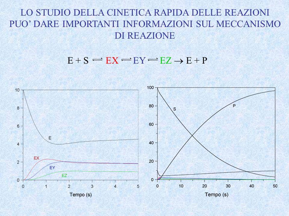 LO STUDIO DELLA CINETICA RAPIDA DELLE REAZIONI