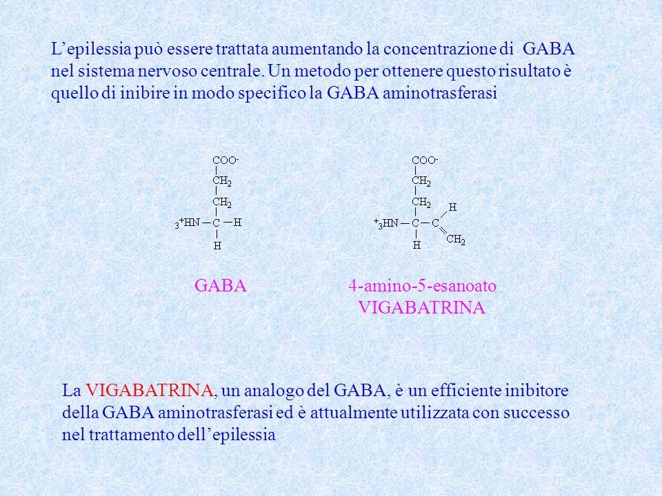 L'epilessia può essere trattata aumentando la concentrazione di GABA
