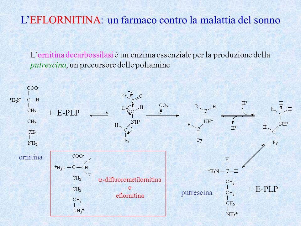 a-difluorometilornitina