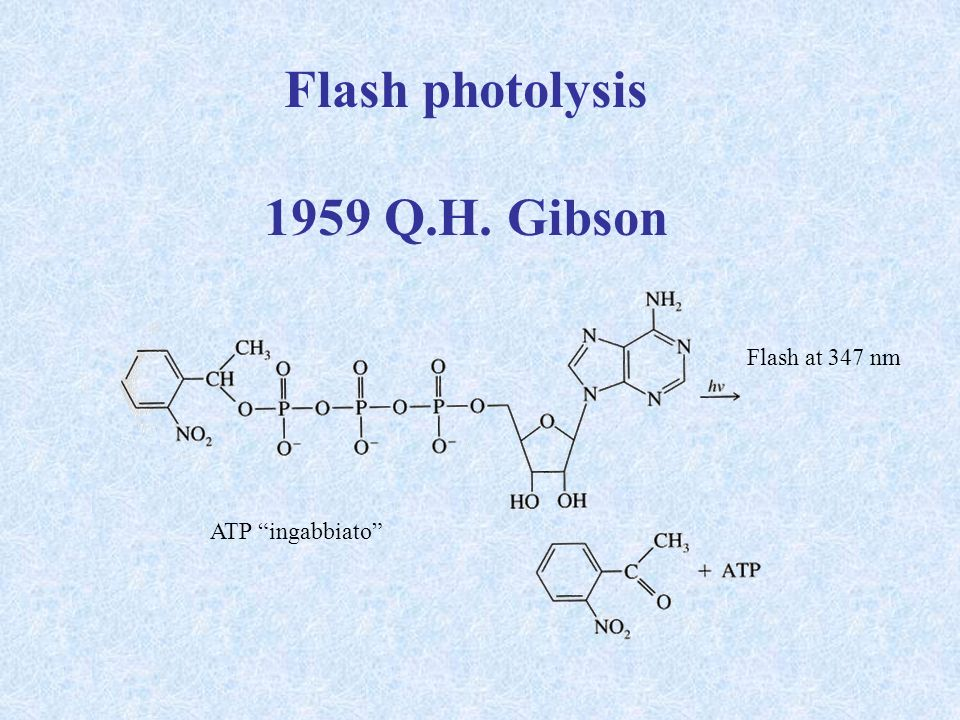Flash photolysis 1959 Q.H. Gibson