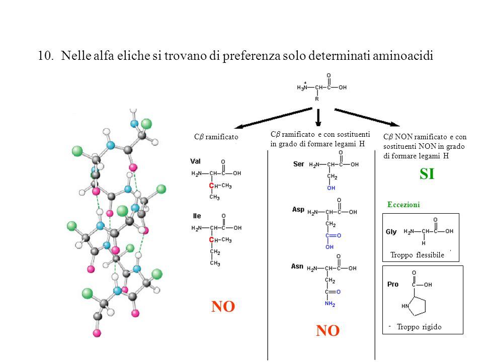 Nelle alfa eliche si trovano di preferenza solo determinati aminoacidi