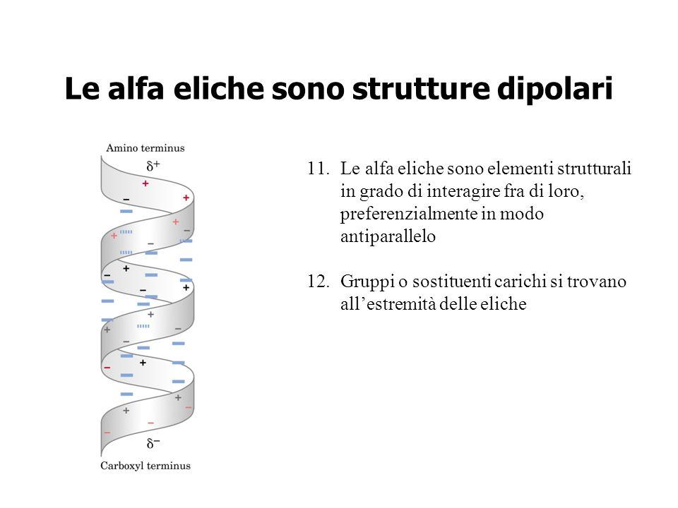 Le alfa eliche sono strutture dipolari