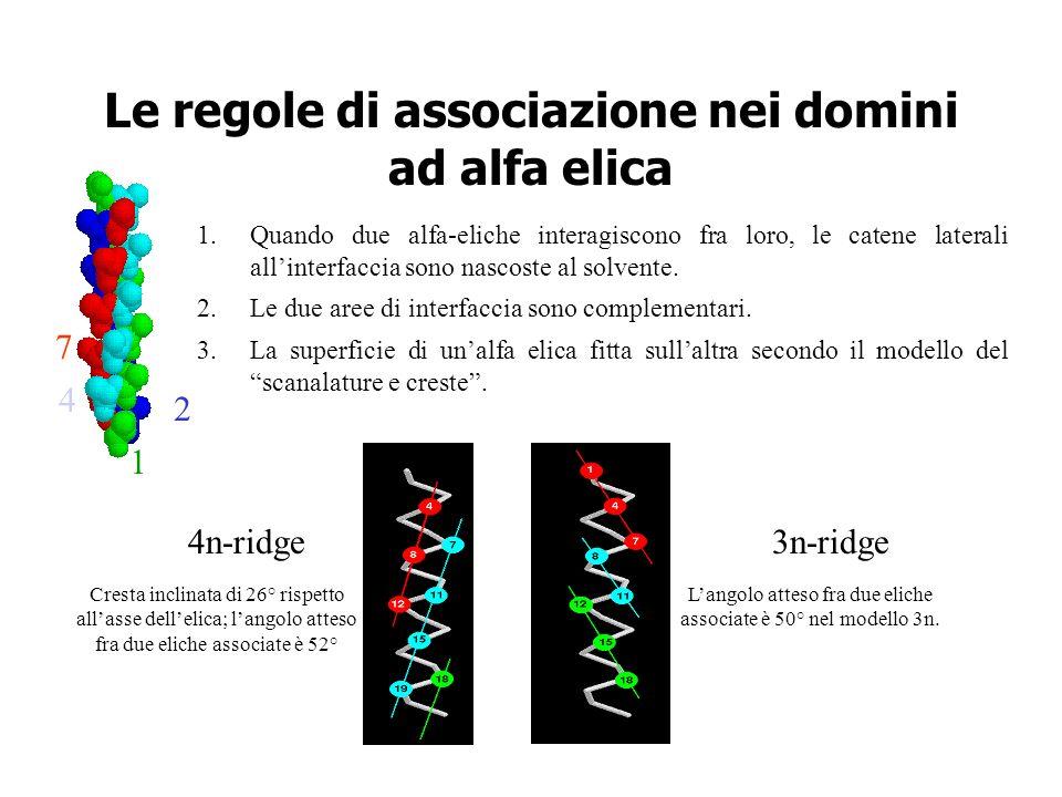 Le regole di associazione nei domini ad alfa elica
