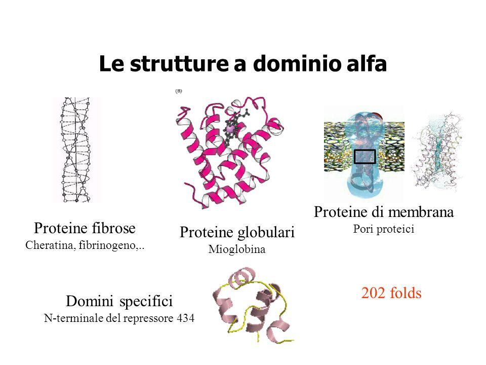 Le strutture a dominio alfa