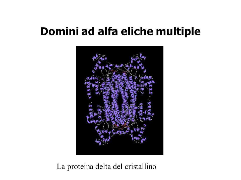 Domini ad alfa eliche multiple