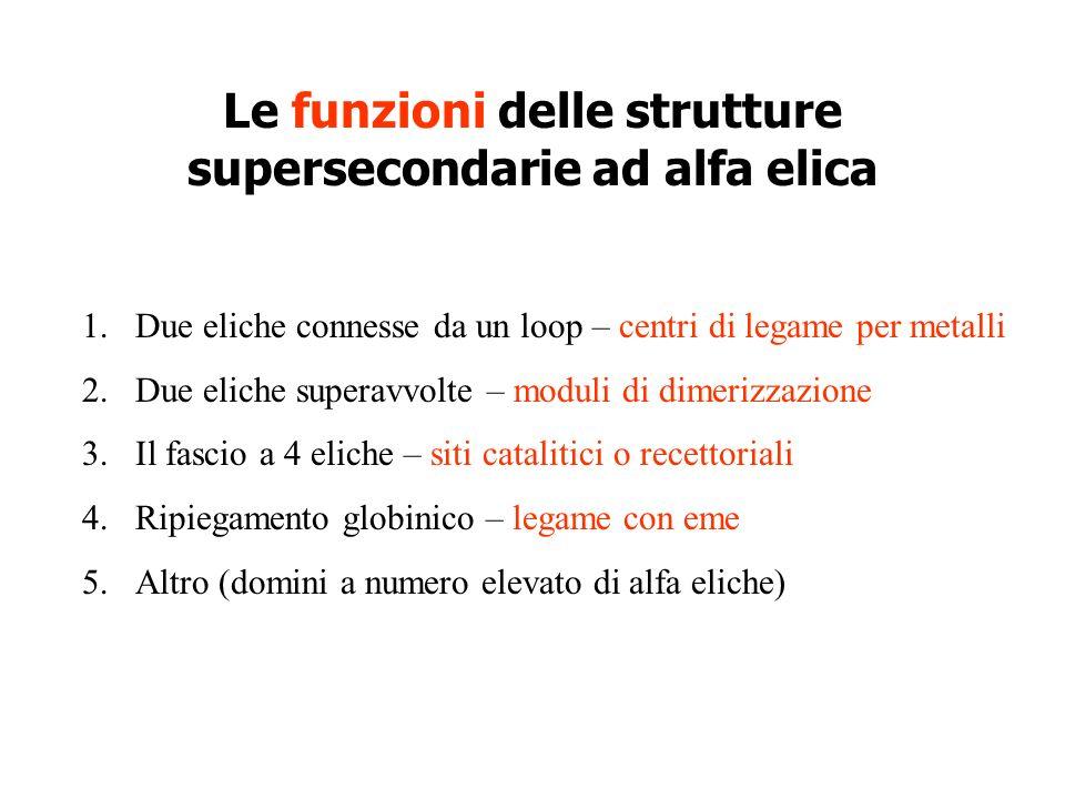 Le funzioni delle strutture supersecondarie ad alfa elica