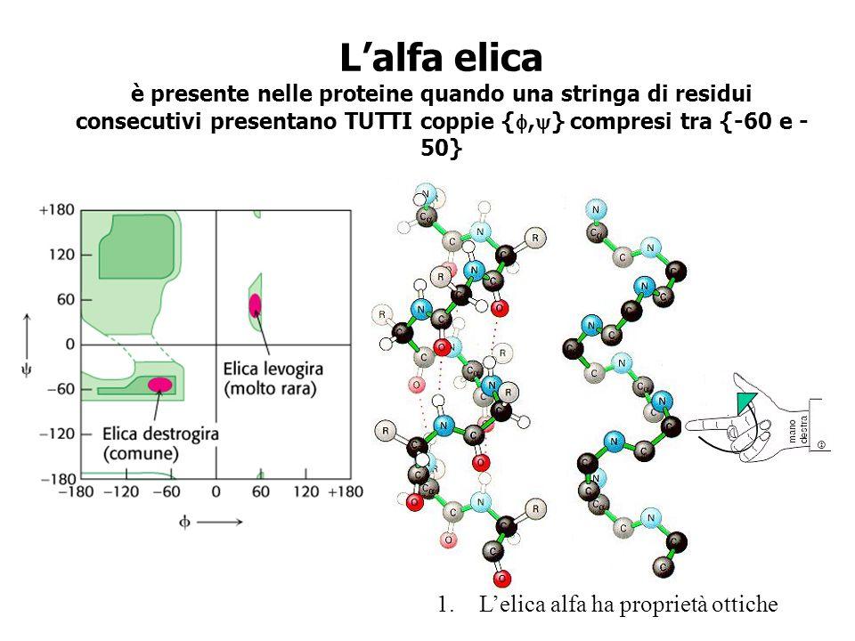 L'alfa elica è presente nelle proteine quando una stringa di residui consecutivi presentano TUTTI coppie {f,y} compresi tra {-60 e -50}