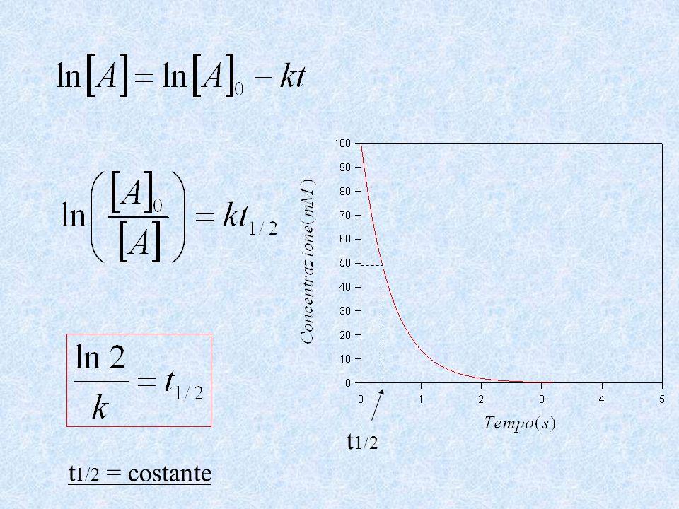 t1/2 t1/2 = costante