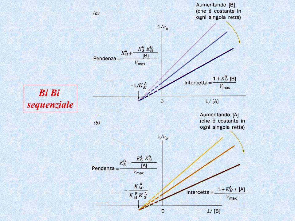Bi Bi sequenziale