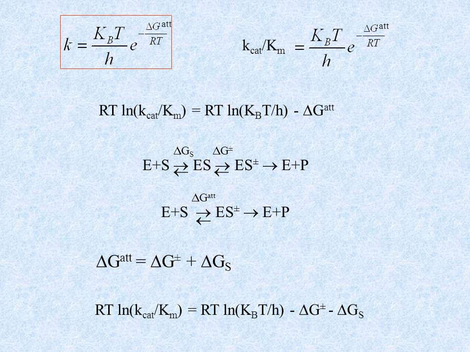 Gatt = G± + GS kcat/Km RT ln(kcat/Km) = RT ln(KBT/h) - Gatt