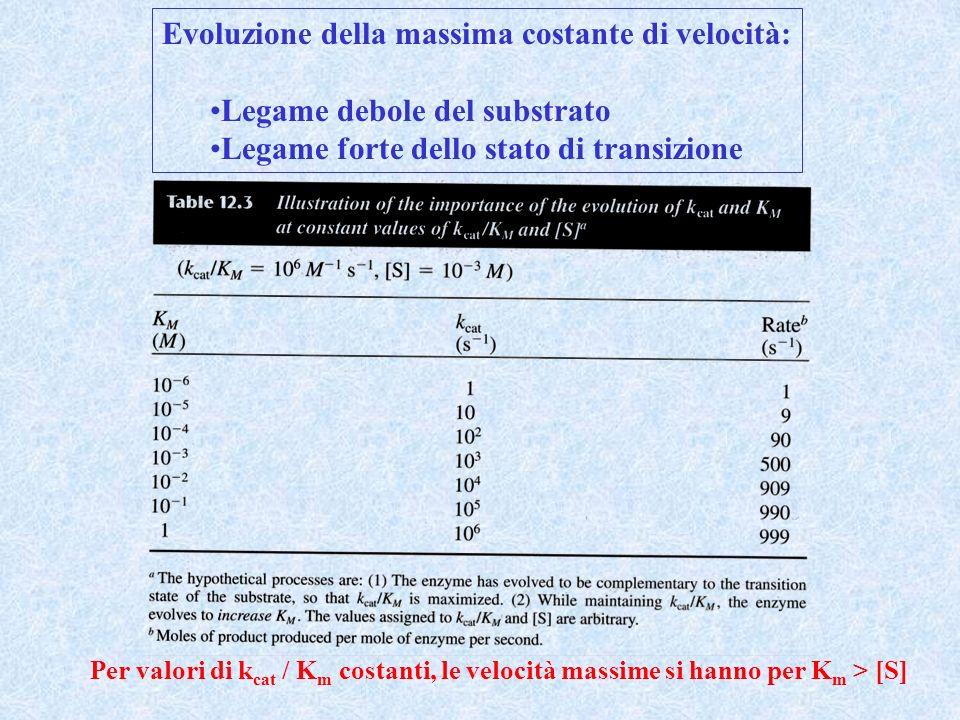 Evoluzione della massima costante di velocità: