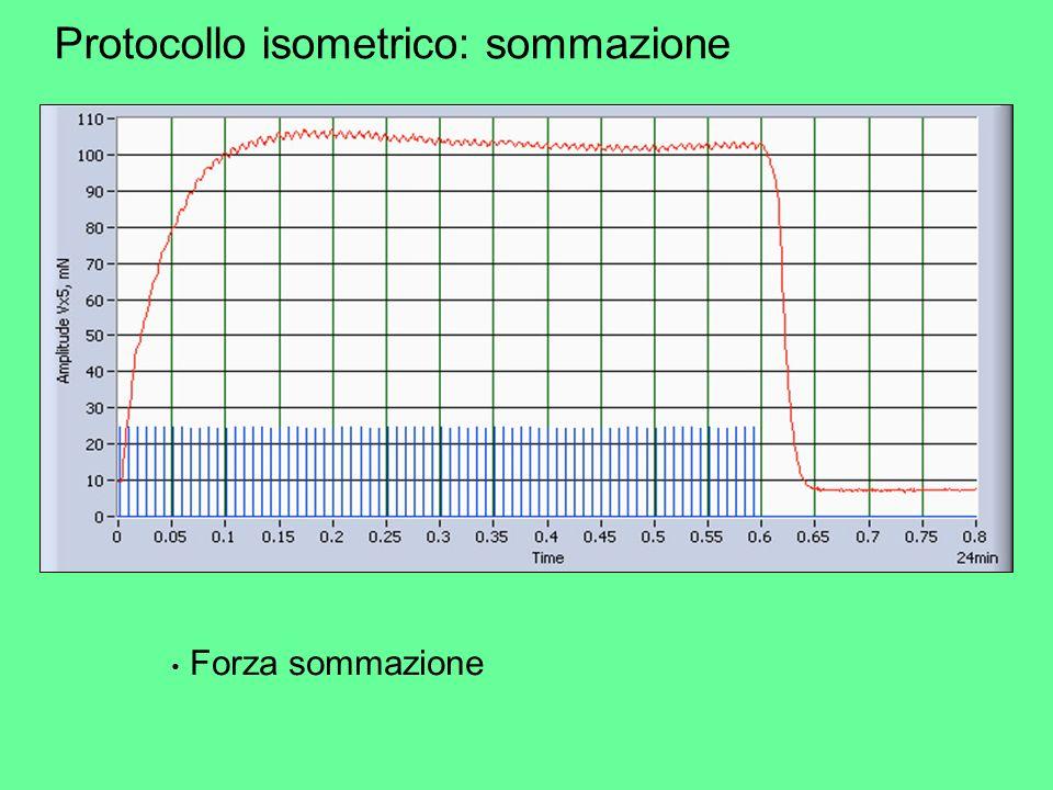 Protocollo isometrico: sommazione