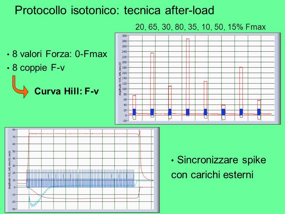 Protocollo isotonico: tecnica after-load
