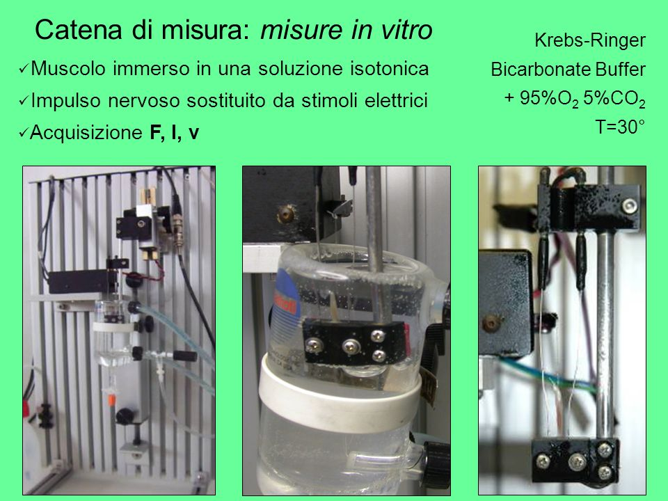 Catena di misura: misure in vitro