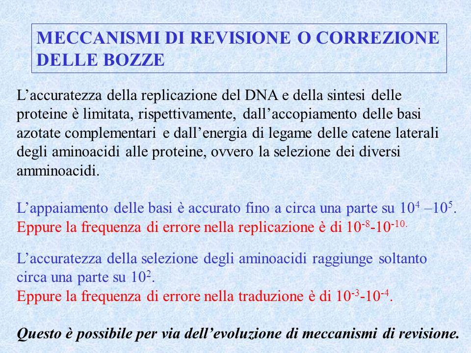 MECCANISMI DI REVISIONE O CORREZIONE DELLE BOZZE
