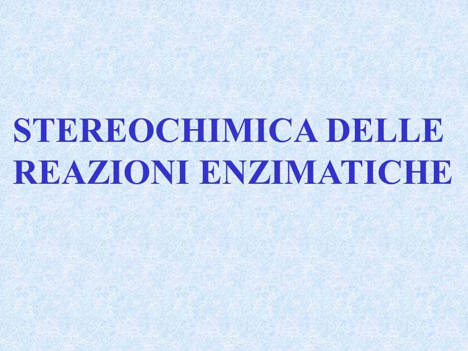 STEREOCHIMICA DELLE REAZIONI ENZIMATICHE