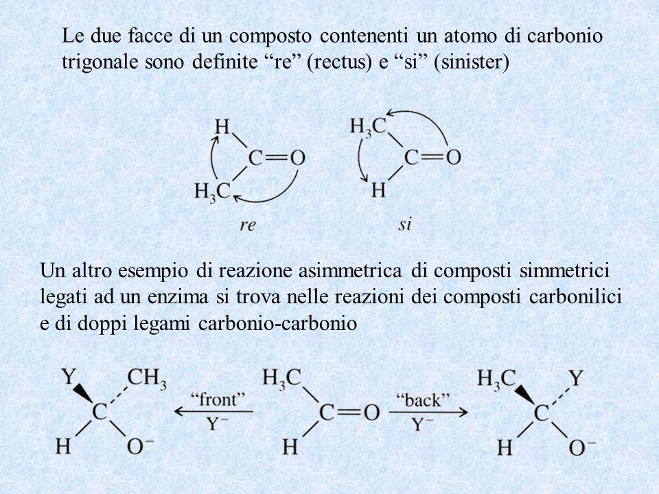 Le due facce di un composto contenenti un atomo di carbonio