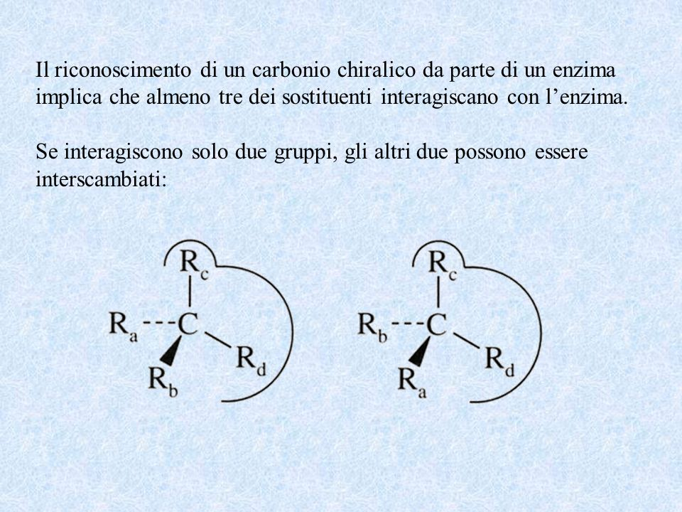Il riconoscimento di un carbonio chiralico da parte di un enzima