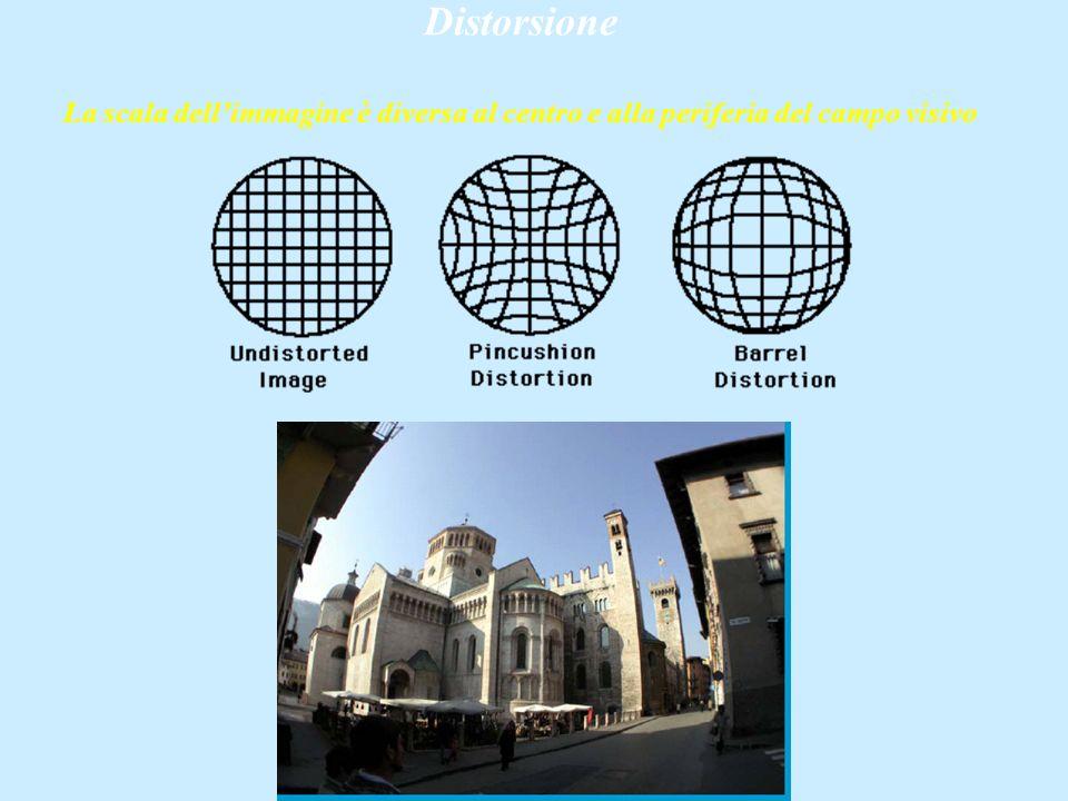 Distorsione La scala dell'immagine è diversa al centro e alla periferia del campo visivo