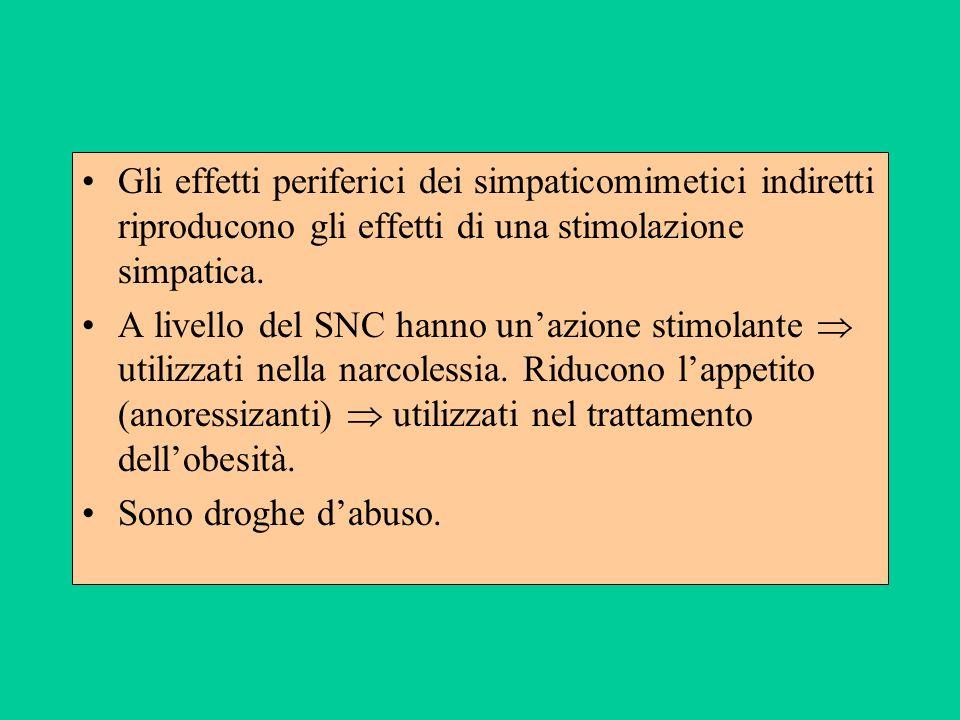 Gli effetti periferici dei simpaticomimetici indiretti riproducono gli effetti di una stimolazione simpatica.