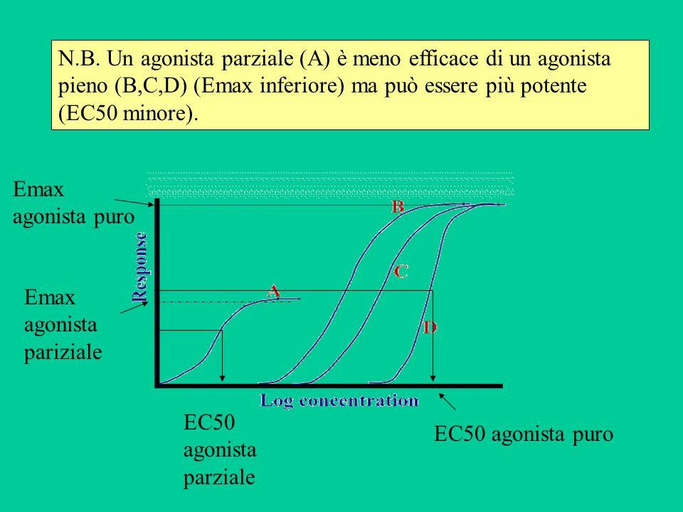N.B. Un agonista parziale (A) è meno efficace di un agonista pieno (B,C,D) (Emax inferiore) ma può essere più potente (EC50 minore).