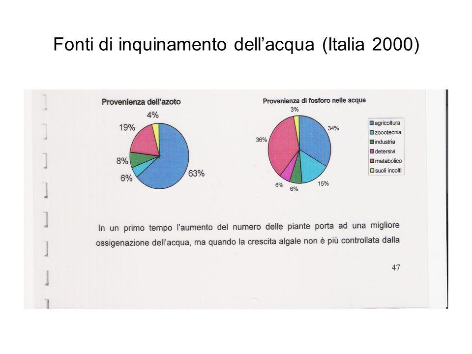 Fonti di inquinamento dell'acqua (Italia 2000)
