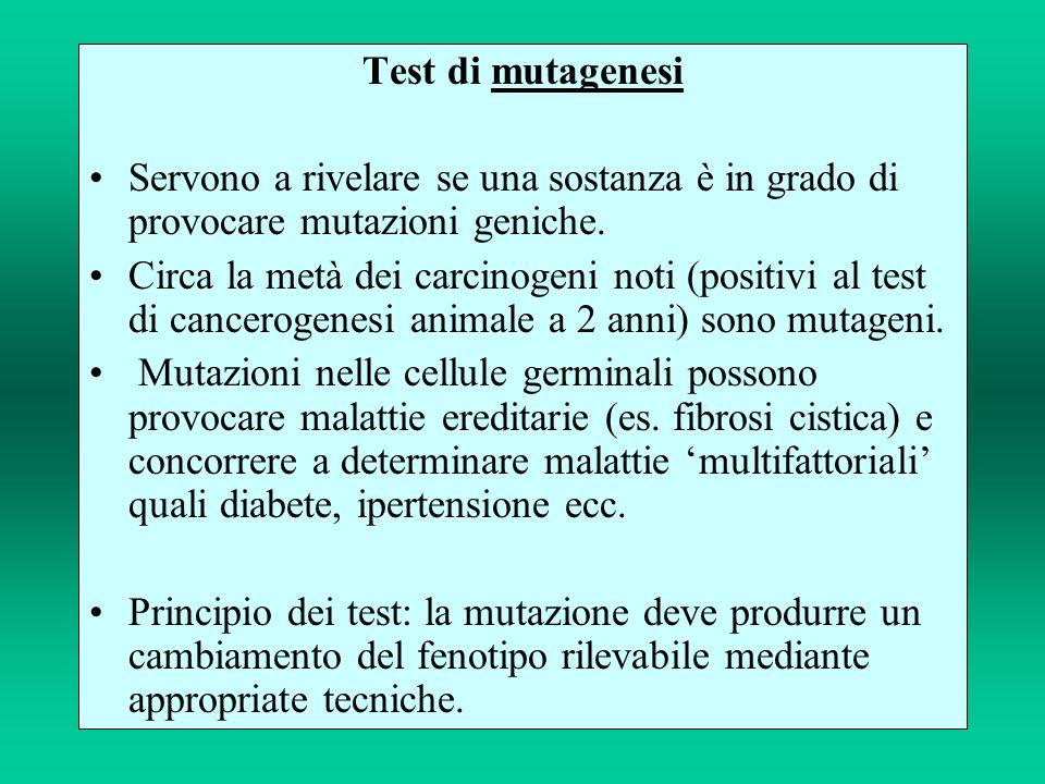 Test di mutagenesi Servono a rivelare se una sostanza è in grado di provocare mutazioni geniche.