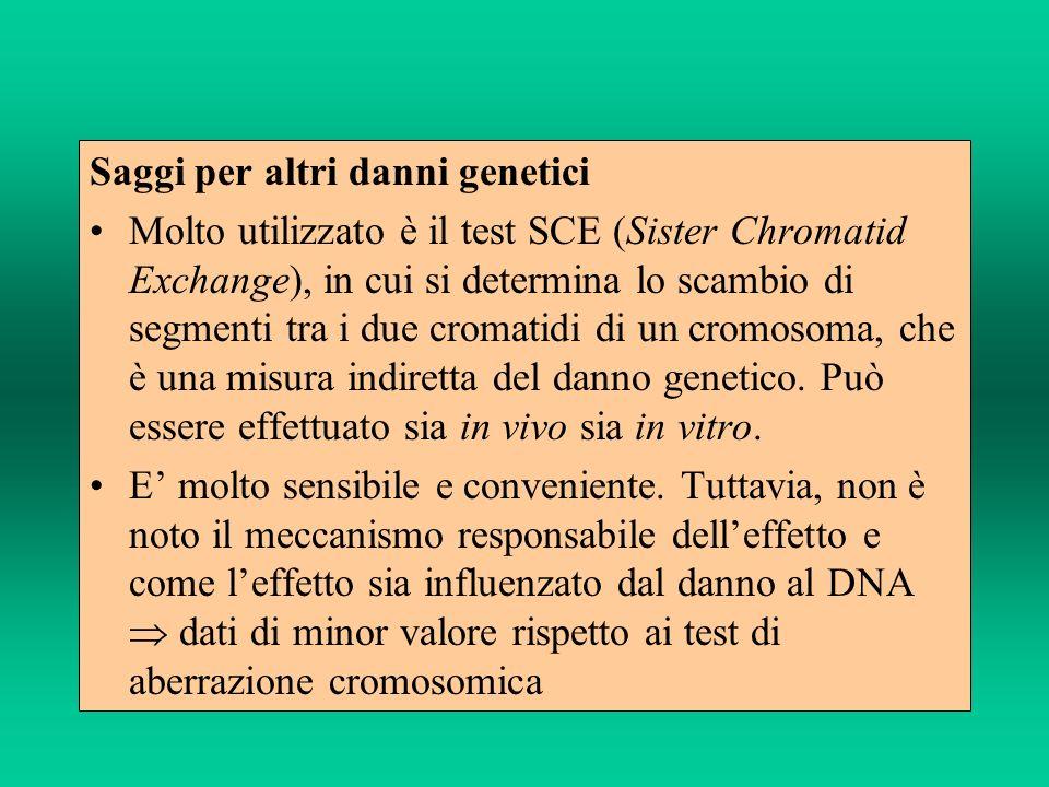 Saggi per altri danni genetici