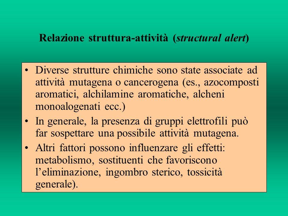 Relazione struttura-attività (structural alert)