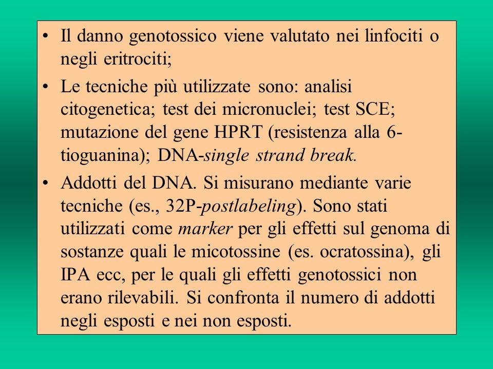 Il danno genotossico viene valutato nei linfociti o negli eritrociti;
