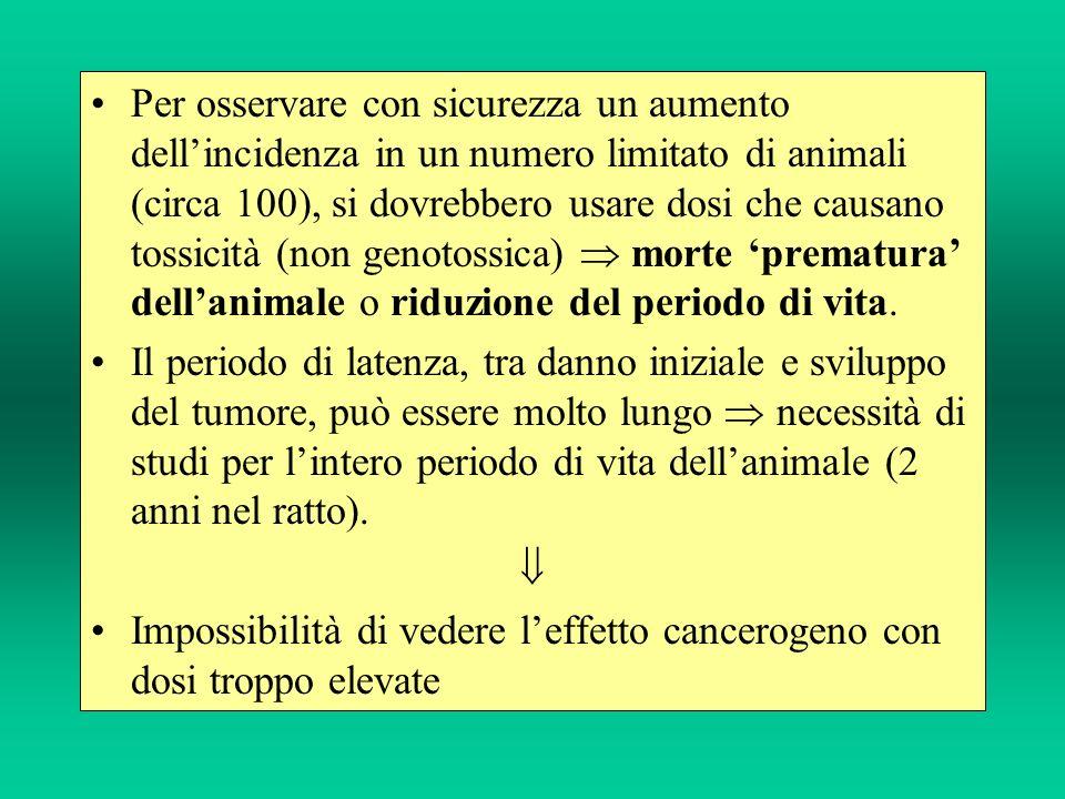 Per osservare con sicurezza un aumento dell'incidenza in un numero limitato di animali (circa 100), si dovrebbero usare dosi che causano tossicità (non genotossica)  morte 'prematura' dell'animale o riduzione del periodo di vita.