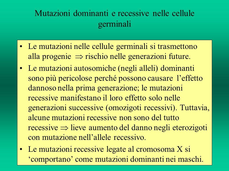 Mutazioni dominanti e recessive nelle cellule germinali