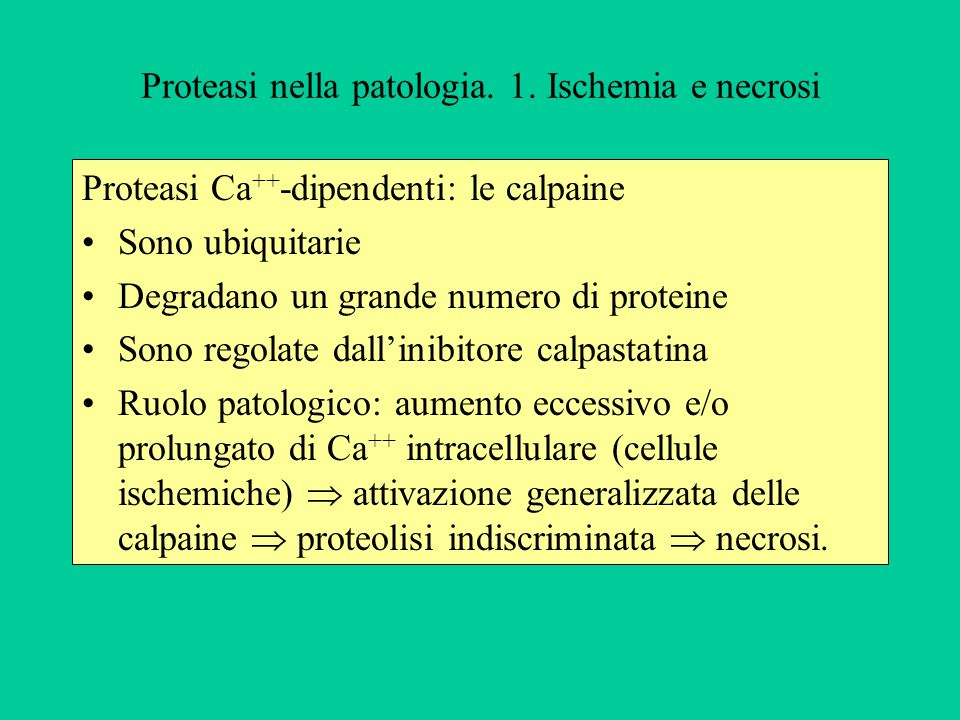 Proteasi nella patologia. 1. Ischemia e necrosi