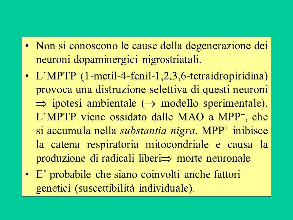 Non si conoscono le cause della degenerazione dei neuroni dopaminergici nigrostriatali.