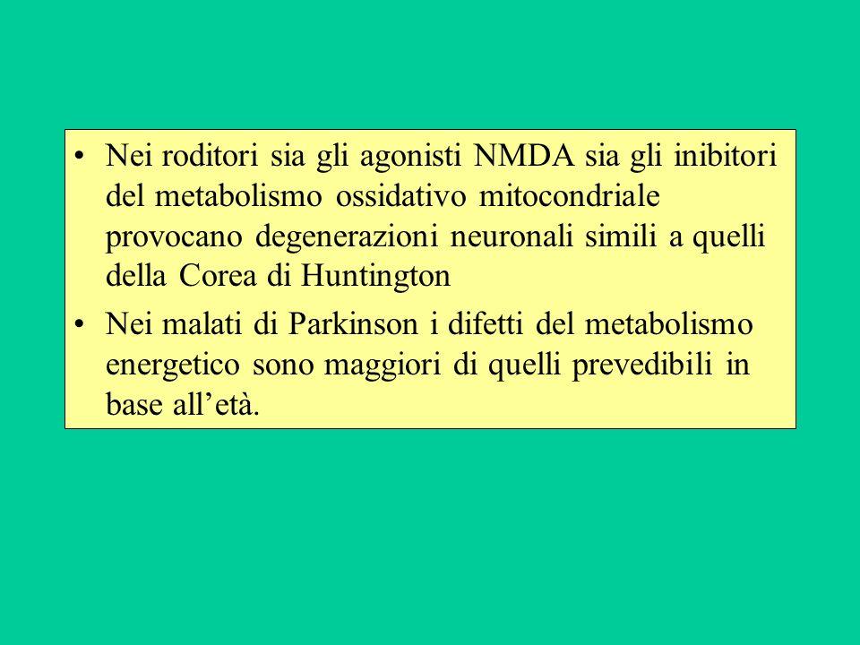 Nei roditori sia gli agonisti NMDA sia gli inibitori del metabolismo ossidativo mitocondriale provocano degenerazioni neuronali simili a quelli della Corea di Huntington